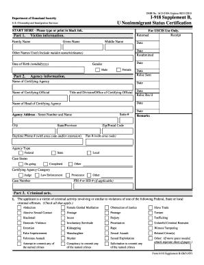 ds 160 form instructions