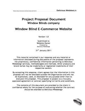 E Commerce Proposal Example  Blank Proposal Template