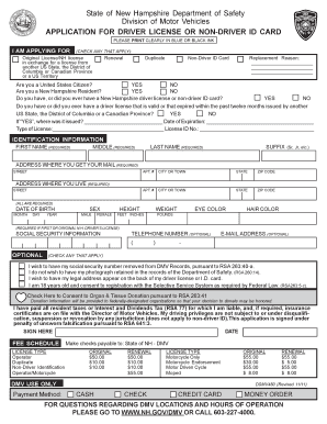 Drivers License Application Form - Fill Online, Printable ...