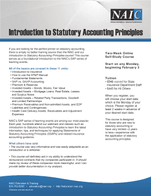 Fillable Online naic Introduction to Statutory Accounting
