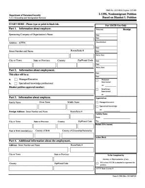 Guidence To Fill I 129s Form - Fill Online, Printable, Fillable ...
