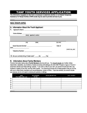 Tanf New York Application - Fill Online, Printable, Fillable ...