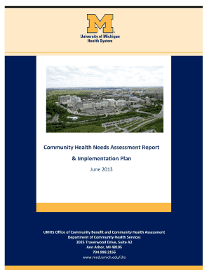 Community Health Needs Assessment Report & Implementation Plan - med umich