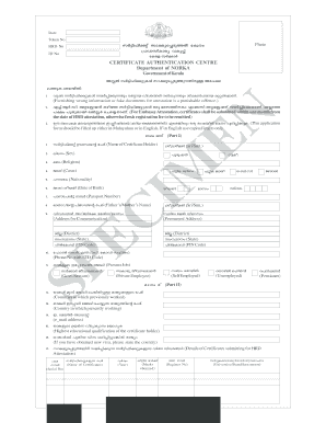 executive summary template doc forms fillable printable samples