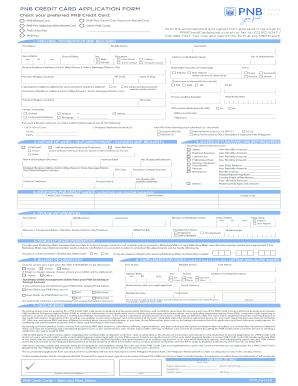 pnb bank online application form