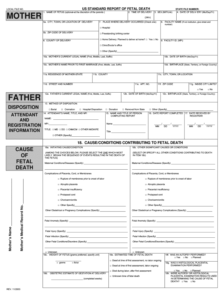 Fetal Death Certificate - Fill Online, Printable, Fillable, Blank With Regard To Baby Death Certificate Template