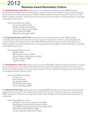 judging criteria for business awards pdf