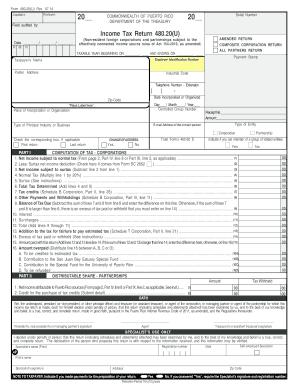 2014 Form PR 480.20 Fill Online, Printable, Fillable, Blank ...