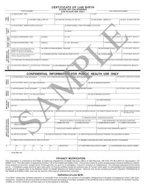 Printable birth certificate sample pdf templates to submit online birth certificate sample pdf yelopaper