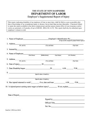 fillable injury tracking spreadsheet edit online print download