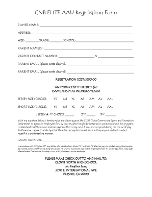 Fillable Online CNB ELITE AAU Registration Form Fax Email