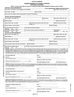 Paternity affidavit form sample free download.