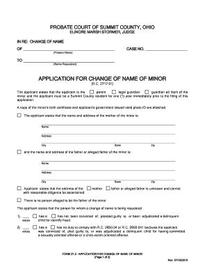 affidavit for father name mismatch - Fill, Print & Download