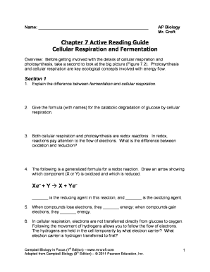 campbell biology study guide chapter 7 cellular respiration fill rh pdffiller com section 4 overview of cellular respiration study guide b cellular respiration study guide