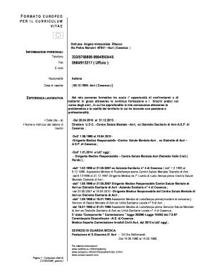 Formato Europeo Per Il Curriculum Vitae Esempi Di Curriculum Vitae