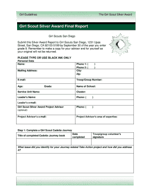 Fillable Online Girl Scout Silver Award Final Report - Girl Scouts ...